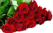 Цветы,  букеты в наличии и на заказ,  доставка