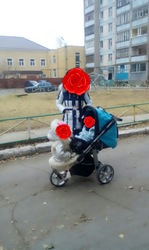 коляска для погодок