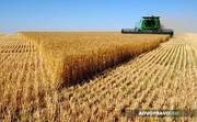 Продам землю для сельского хозяйства
